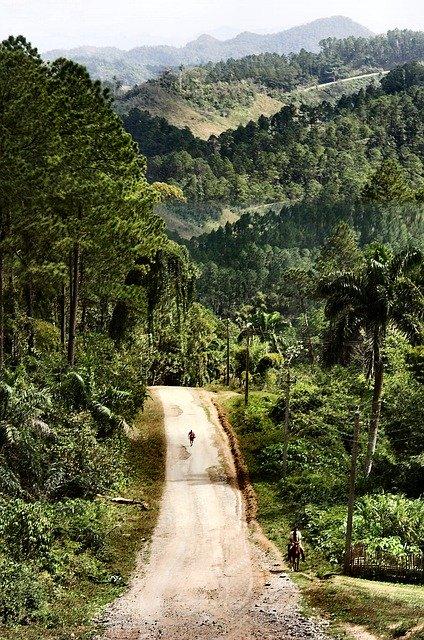Road in Trinidad